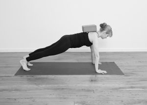 Scapular protraction in Plank Pose
