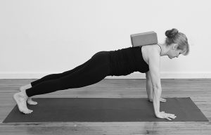 Scapular retraction in Plank Pose